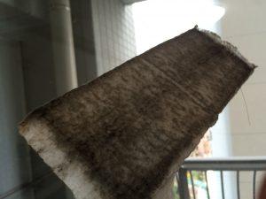 非常にお見苦しいですが…これが網戸の汚れです…!!