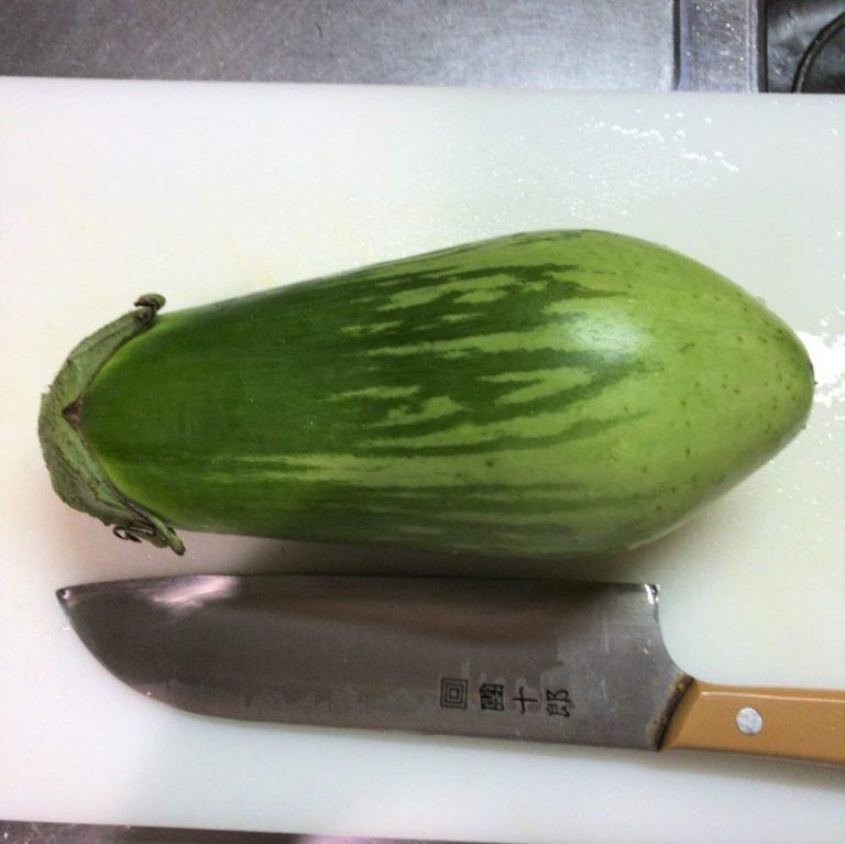 包丁より大きいトロナス。