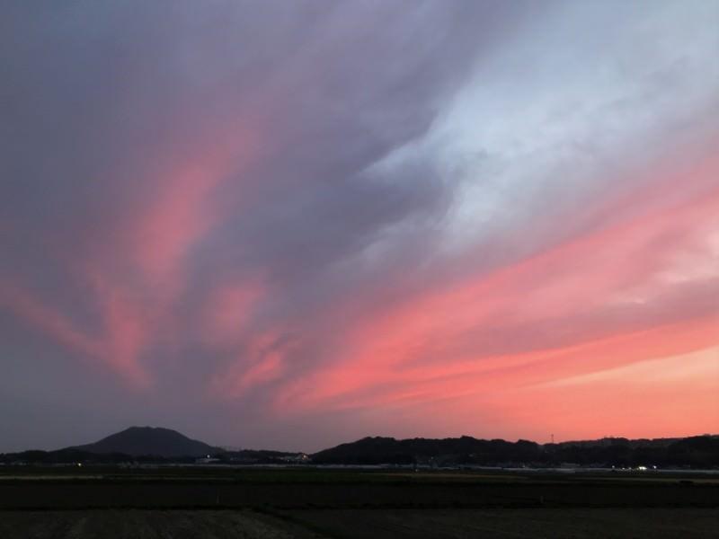 糸島ジョギング