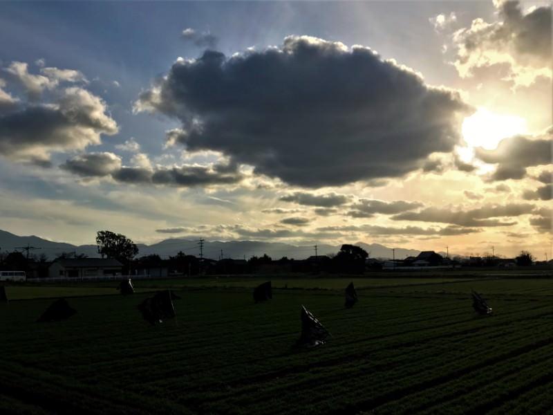 写真:どんよりとした田園風景