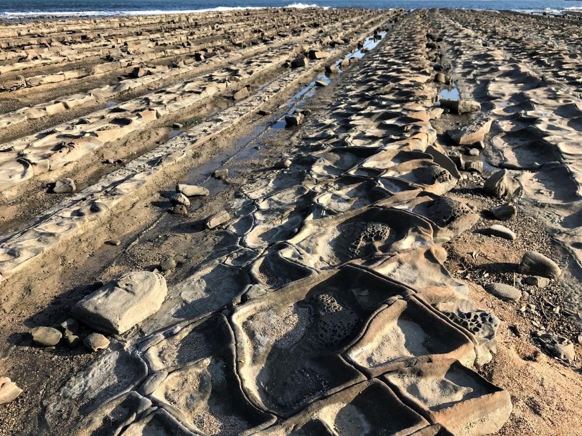 写真:宮崎 青島 鬼の洗濯岩