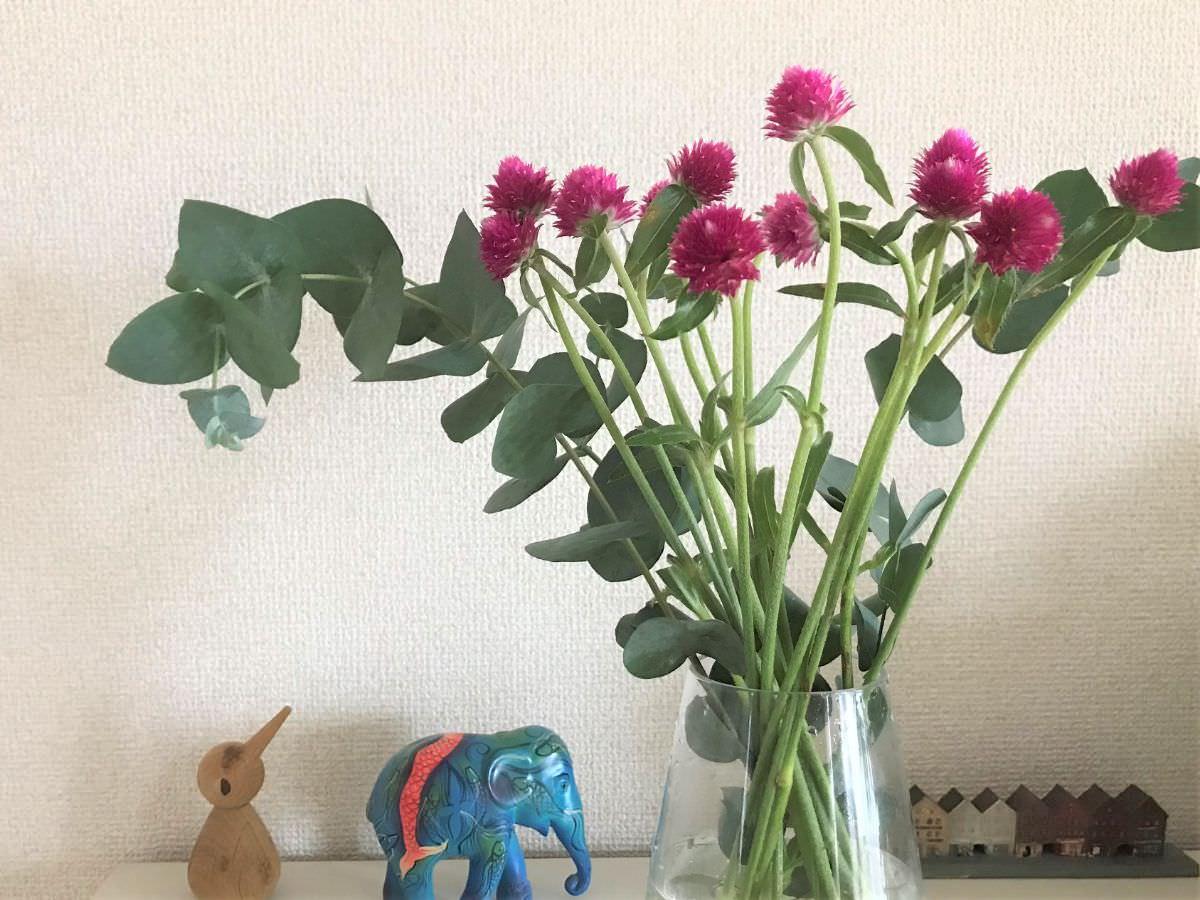 写真:ユーカリと千日紅の花