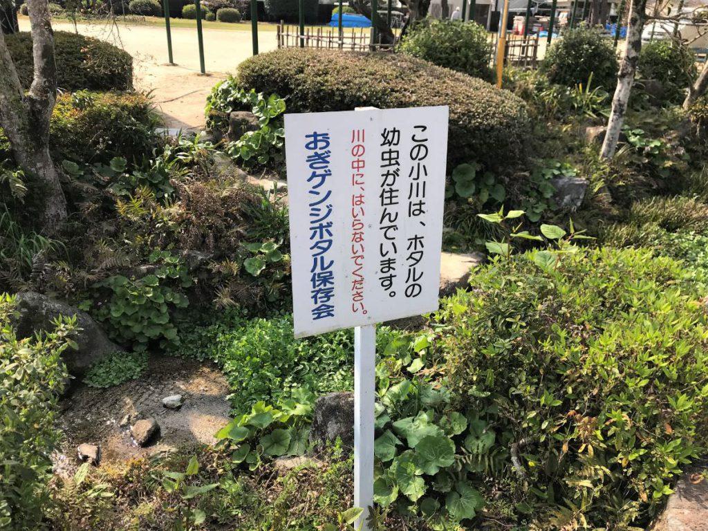 写真:佐賀県小城市 小城公園 蛍のいる小川