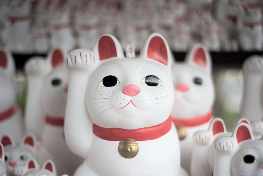 写真:招き猫イメージ