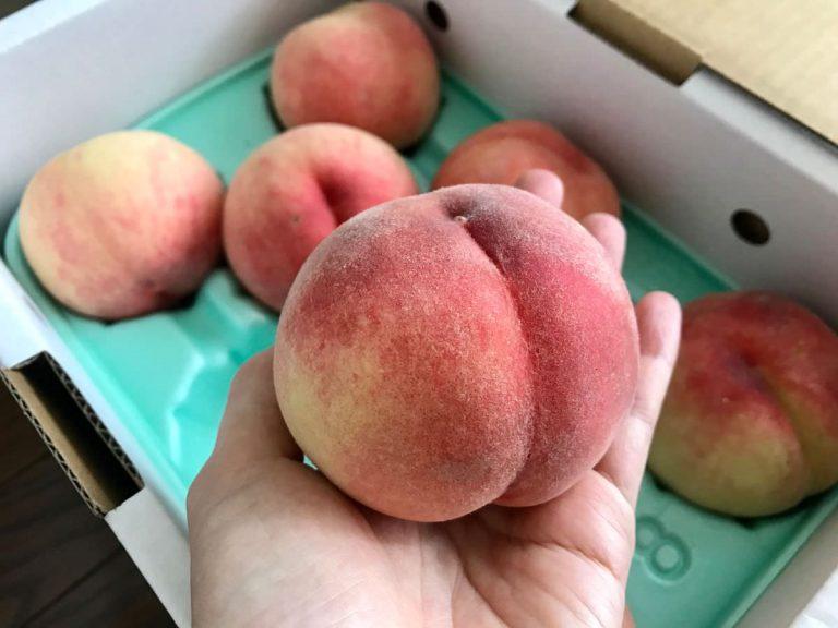 写真:桃(福島のあかつき)を箱買いしました