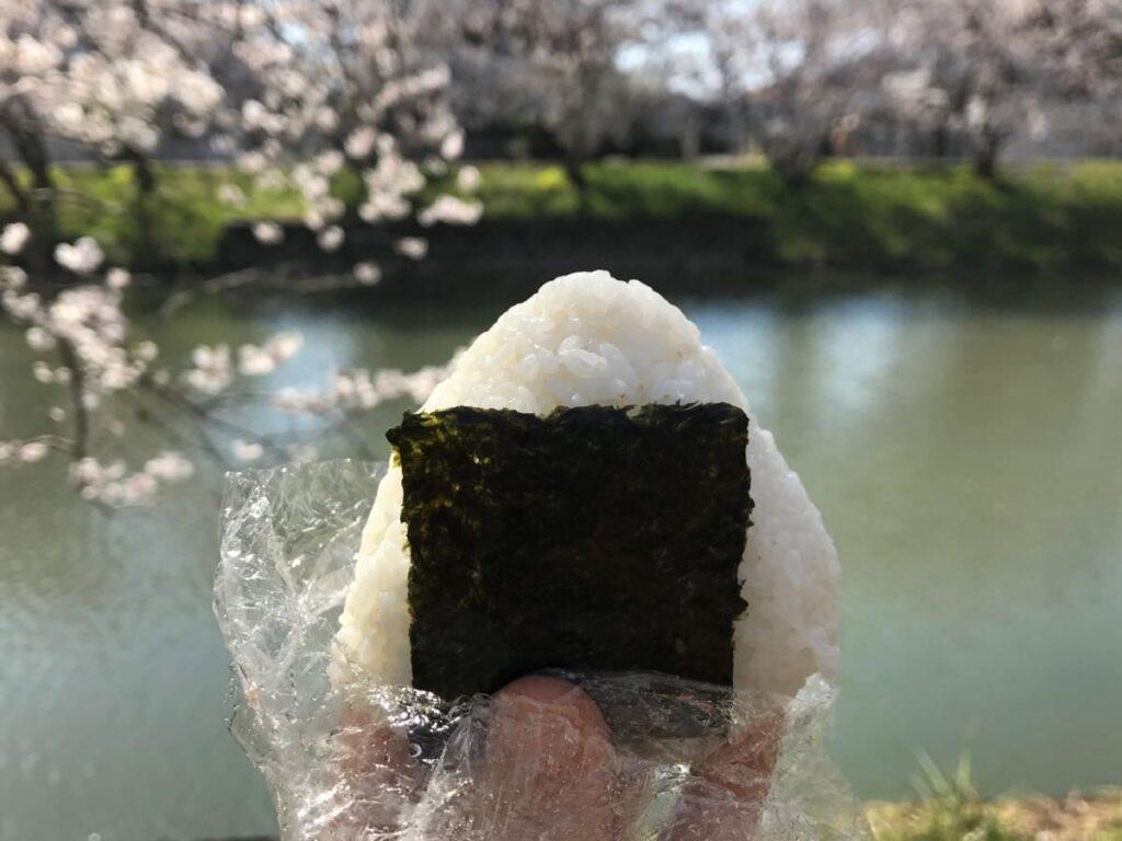 写真:福岡糸島 善福寺川沿いの桜並木とおにぎり