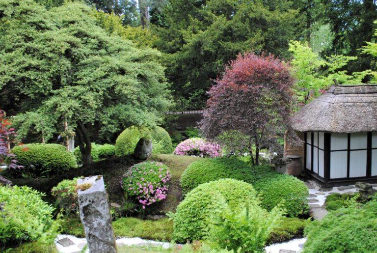写真:きれいな庭イメージ