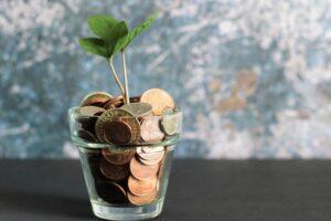 写真:お金を育てるイメージ