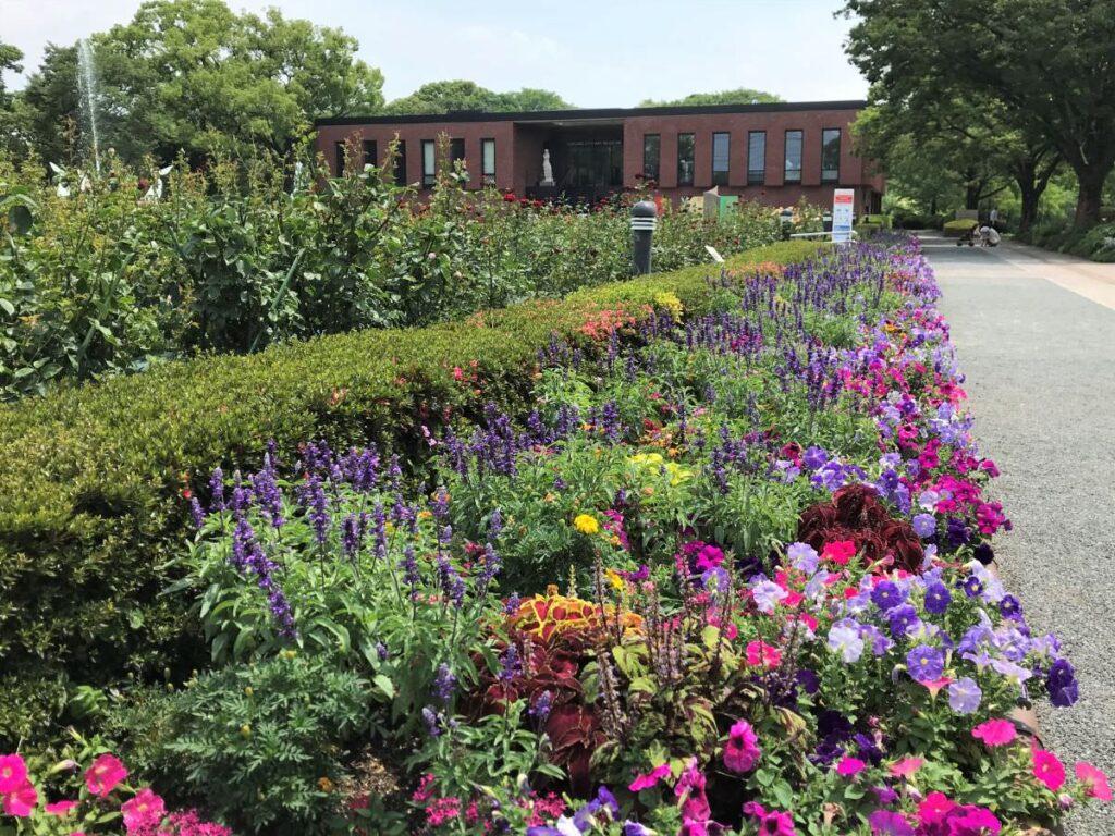 写真:久留米市美術館 庭園